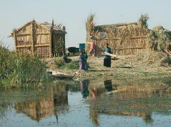 Marsh Dwellings